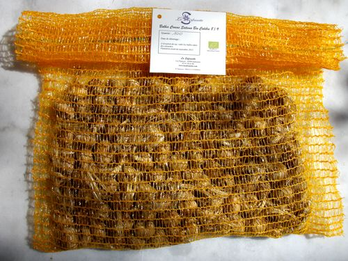 1 000 à 2 000 bulbs of Crocus sativus bio from France